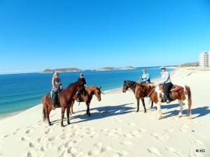 Horseback Riding san carlos
